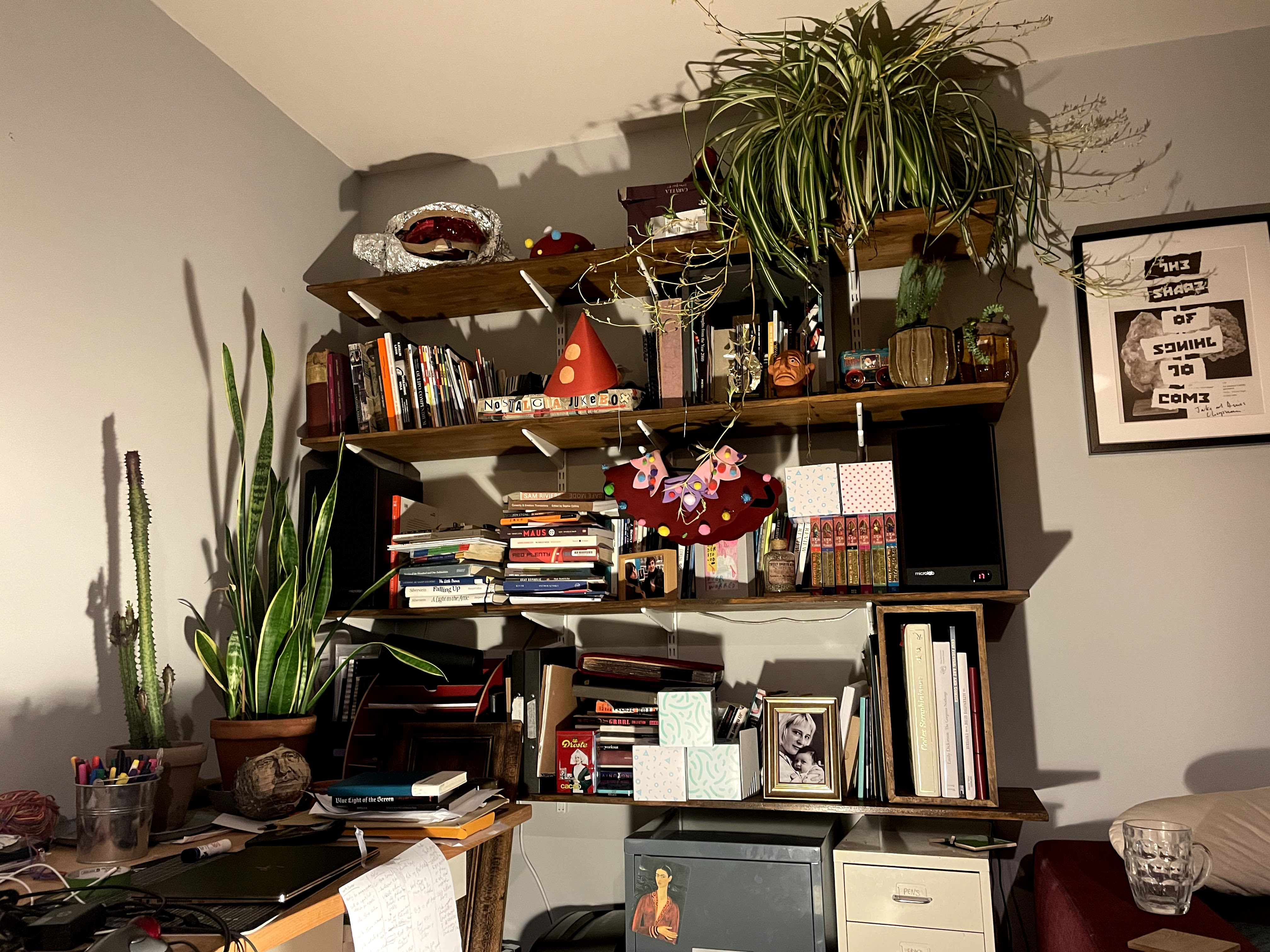 Photograph of shelves in Abi Palmer's flat